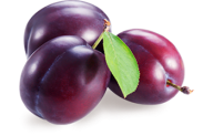 Plum PNG Free Download 20