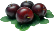 Plum PNG Free Download 21