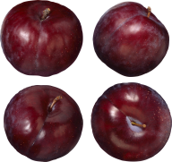 Plum PNG Free Download 24