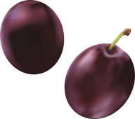 Plum PNG Free Download 25
