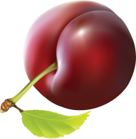 Plum PNG Free Download 7