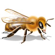 png bee free