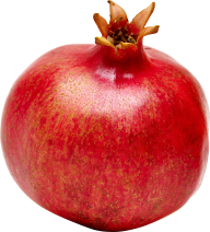 Pomegranate PNG Free Download 10