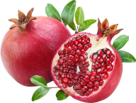 Pomegranate PNG Free Download 11