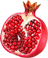 Pomegranate PNG Free Download 16