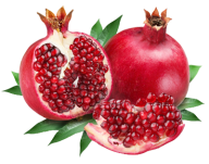 Pomegranate PNG Free Download 17