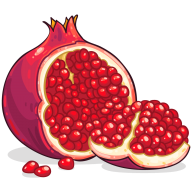 Pomegranate PNG Free Download 3