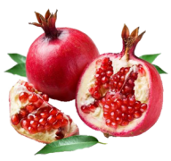 Pomegranate PNG Free Download 5