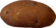Potato PNG Free Download 1