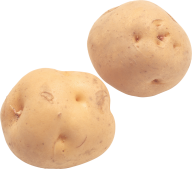 Potato PNG Free Download 10