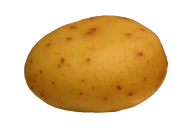 Potato PNG Free Download 12