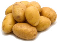 Potato PNG Free Download 15
