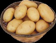 Potato PNG Free Download 17