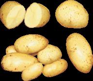 Potato PNG Free Download 18