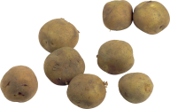 Potato PNG Free Download 2