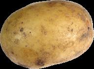 Potato PNG Free Download 20