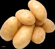 Potato PNG Free Download 23