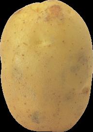 Potato PNG Free Download 25