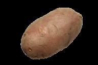 Potato PNG Free Download 3