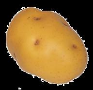 Potato PNG Free Download 7