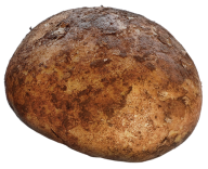 Potato PNG Free Download 8