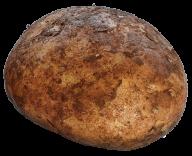 Potato PNG Free Download 8