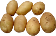 Potato PNG Free Download 9