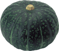 Pumpkin PNG Free Download 10