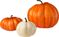 Pumpkin PNG Free Download 14