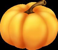 Pumpkin PNG Free Download 17