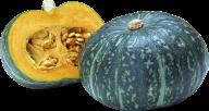 Pumpkin PNG Free Download 2