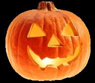 Pumpkin PNG Free Download 23