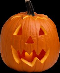 Pumpkin PNG Free Download 24
