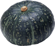 Pumpkin PNG Free Download 3