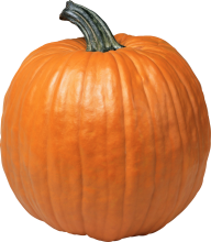Pumpkin PNG Free Download 4