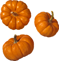 Pumpkin PNG Free Download 5