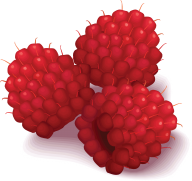 Raspberry PNG Free Download 14