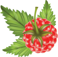 Raspberry PNG Free Download 18