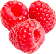 Raspberry PNG Free Download 2