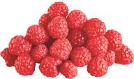 Raspberry PNG Free Download 24