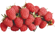 Raspberry PNG Free Download 3