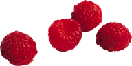 Raspberry PNG Free Download 8