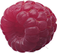 Raspberry PNG Free Download 9