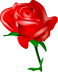 red rose clipart free png download