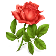 red rose with leaves clipart free png download