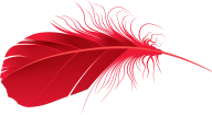 Reddish Feather Png Image