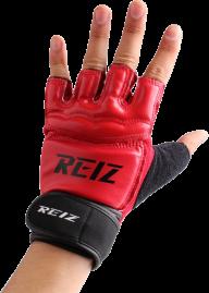 reiz boxing gloves free png download