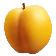 Round Apricot Png Download