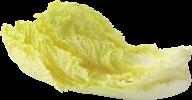 Salad PNG Free Download 10