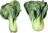 Salad PNG Free Download 12